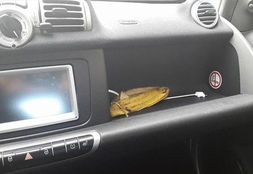 151202-banana-car2go
